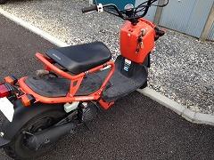 251101_bike.jpg