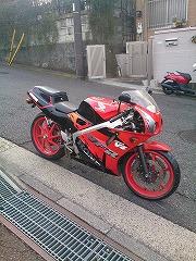 260203_bike.jpg